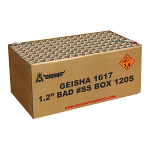 "1,2"" Bad #ss Box 120 shots - 2500 gram"